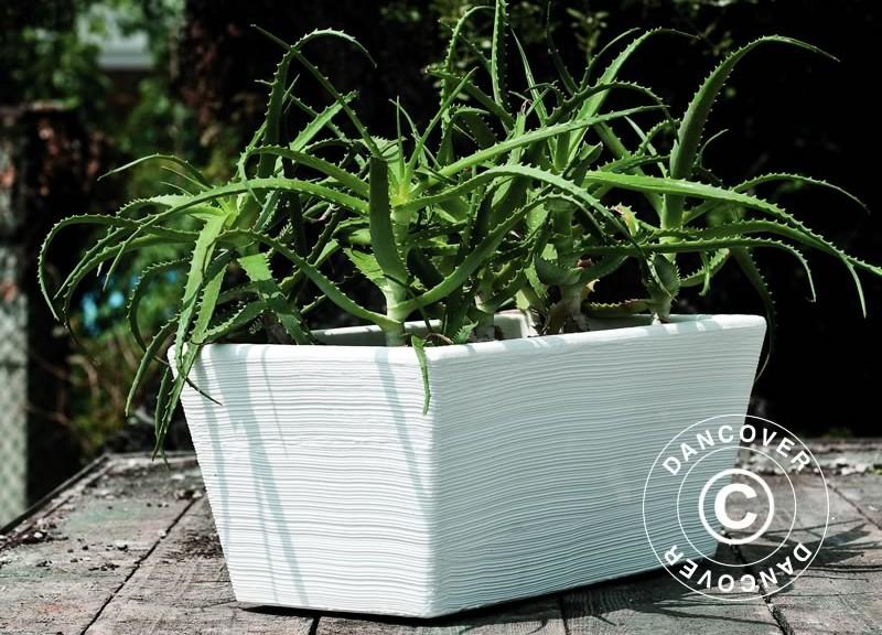 Voordelen van plantenbakken vanpolyethyleen