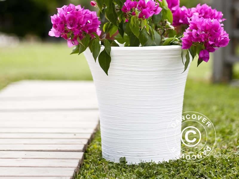 Plantenbakken zijn ideaal voor uw zomerbloemen