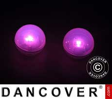 Party Licht LED, Fairy Berry, Roze, 24 stk.